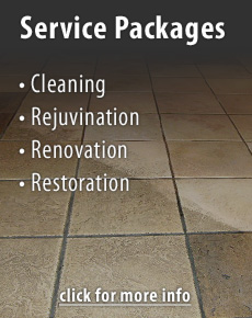 Stone Care Professionals